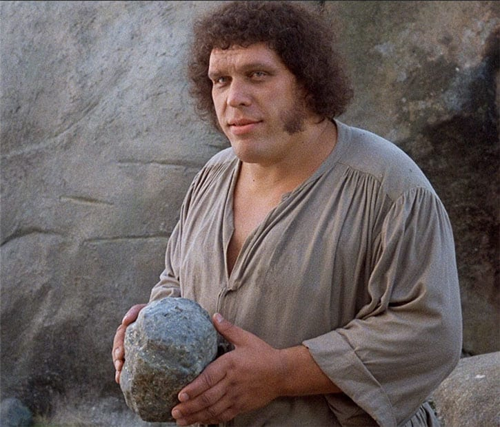 andre the giant - photo #30