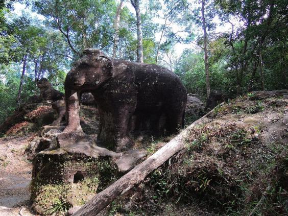 elephant_cambodia_2