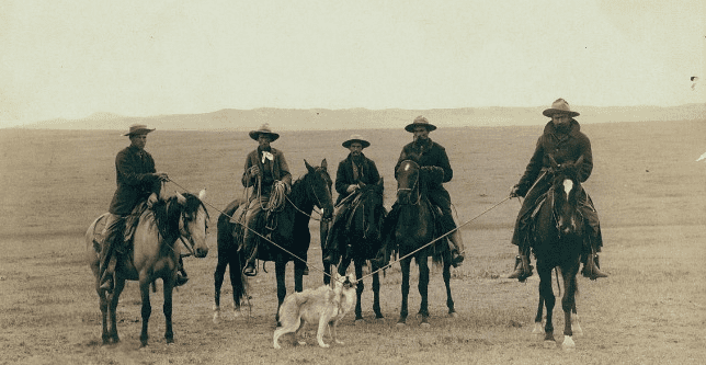 old west wolf captured