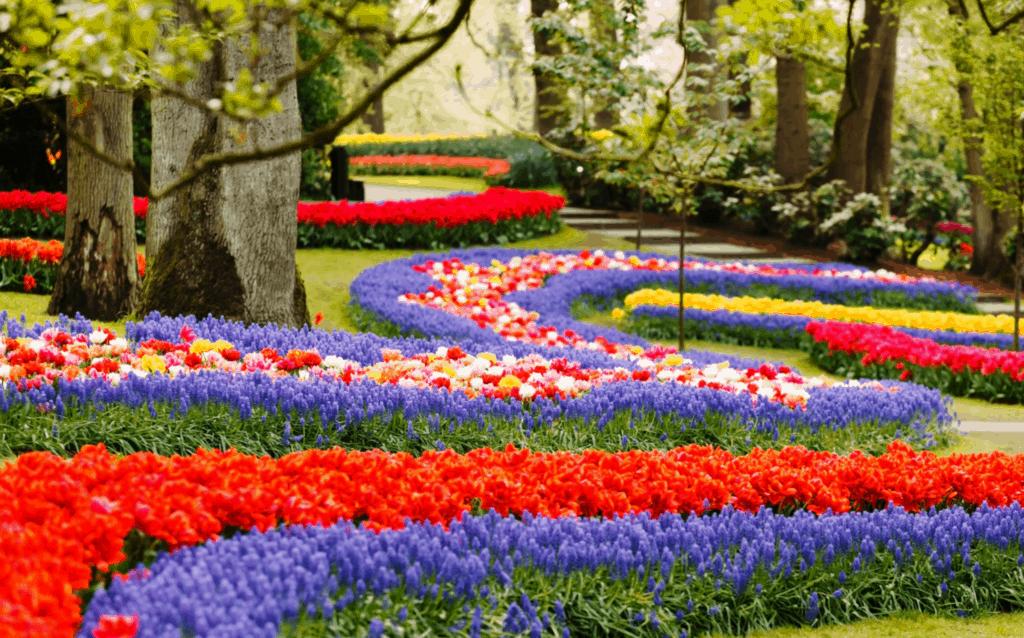 wood-flowers
