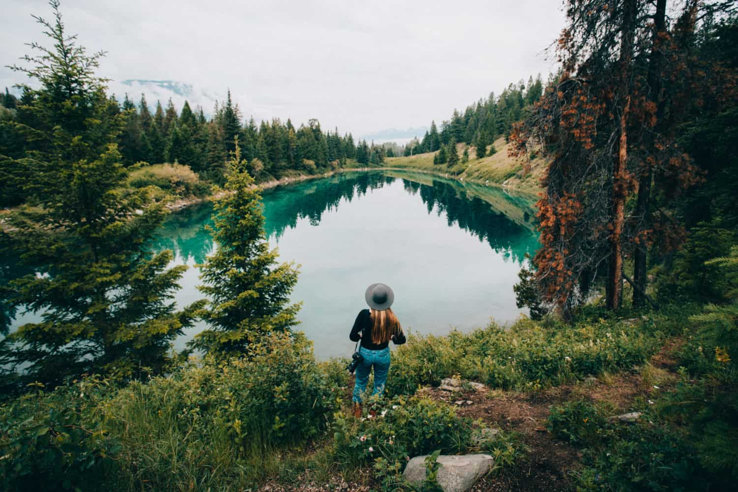Jasper National Park, Canada; Valley of Five Lakes - lakeview