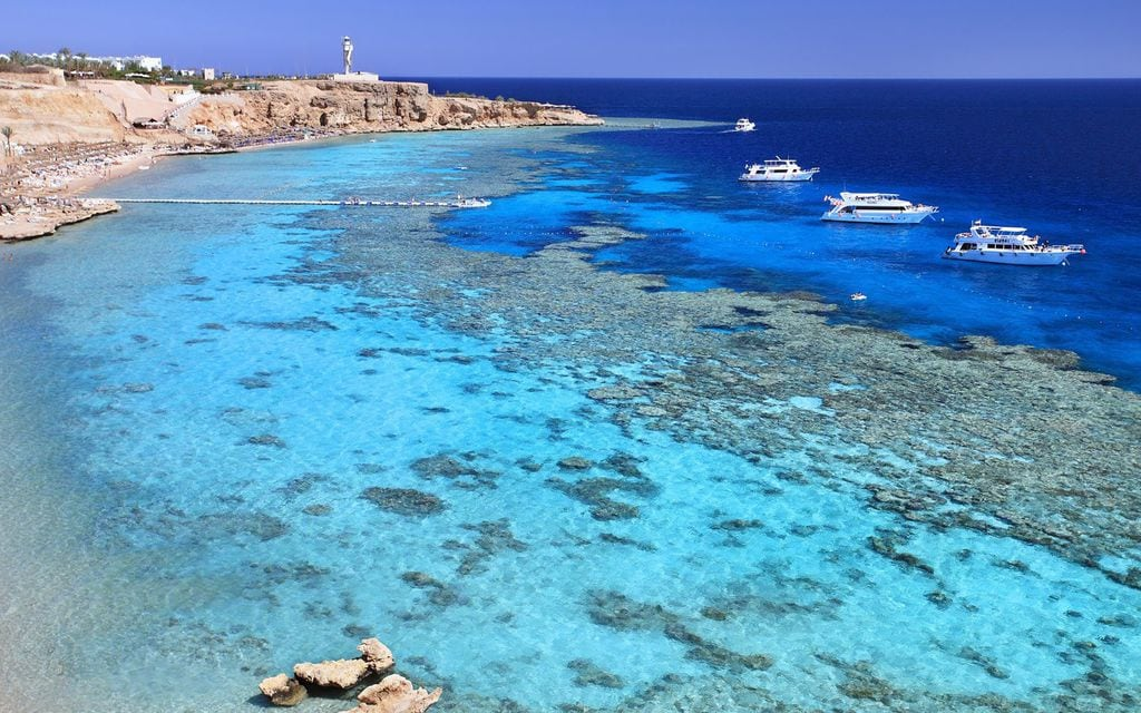 the shores of the Red Sea