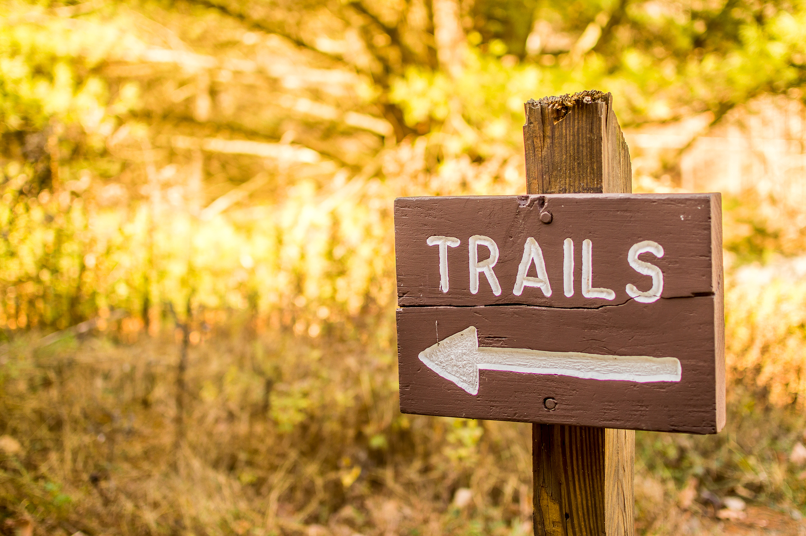 A trail sign from a hiking path in Northeastern Pennsylvania with golden foliage in the background