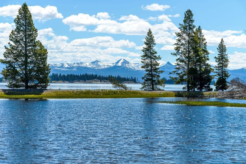 A spring view of Yellowstone Lake with snow-capped mountain range in the background
